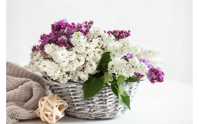 Ideas para decorar una cesta de mimbre con flores