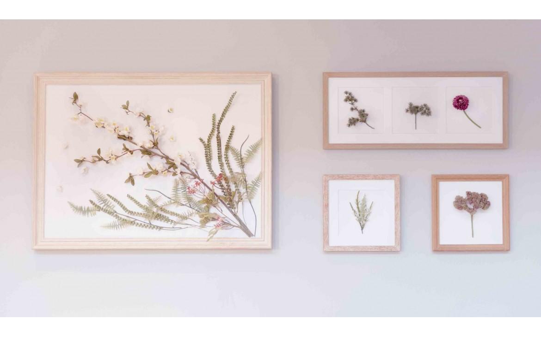 ¿Cómo hacer cuadros de flores secas para decorar tu casa?